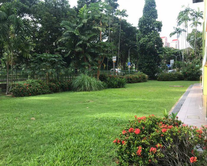 Outdoor Area 1 700x560